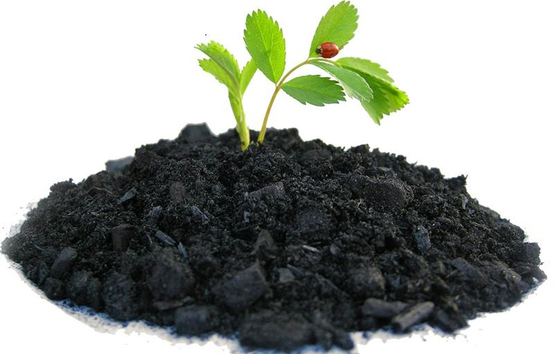 Profitable Fertilizer Company Investment Opportunity in Karnataka, India
