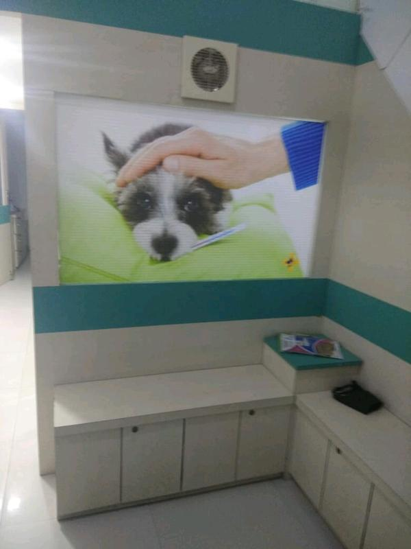 Pet Care Company Investment Opportunity in Mumbai, India