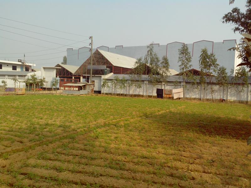Jute & Coir Company Investment Opportunity in Rangpur, Bangladesh