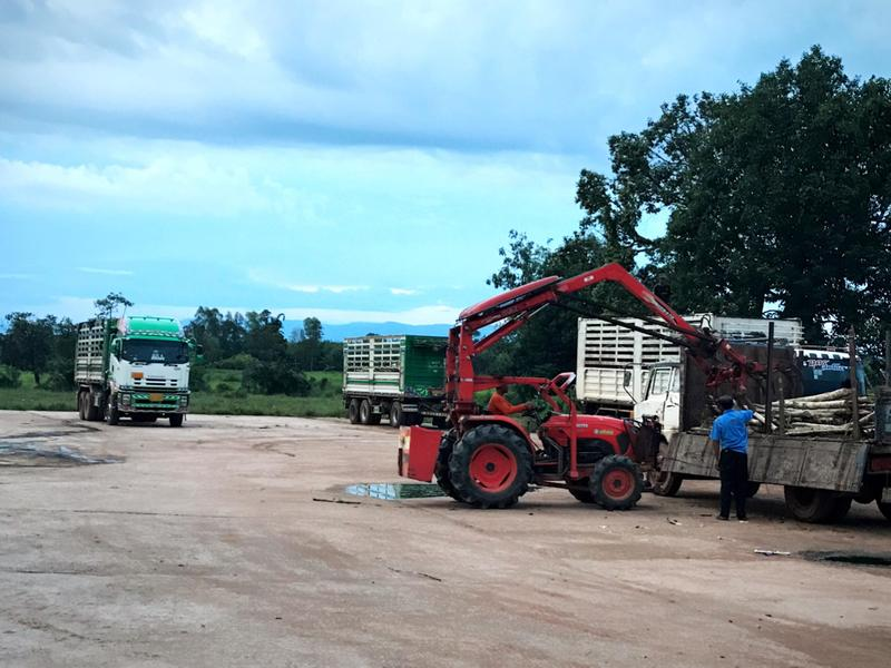 Profitable Agriculture Wholesale Business Seeking Loan in Nong Khai, Thailand