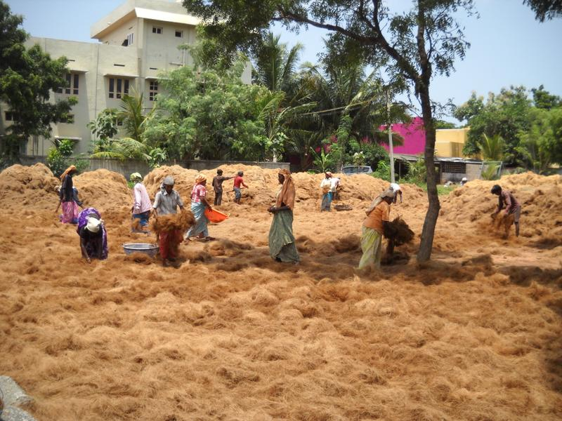 Specialty Coir Fibre Manufacturer Seeking Loan in Nagercoil, India