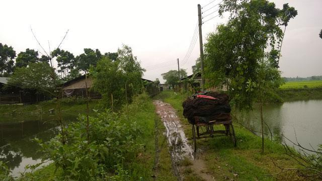 Agriculture Business for Sale in Tangail, Bangladesh