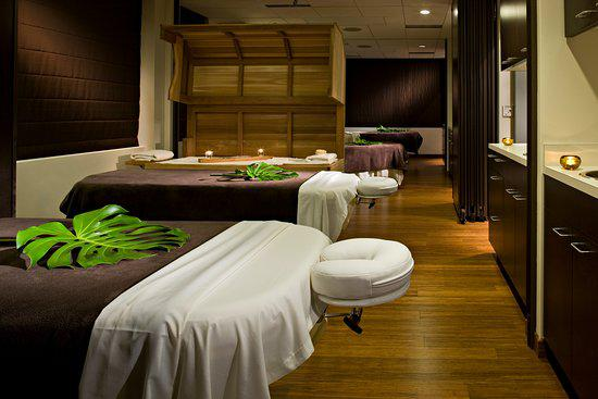 Green Day Spa Franchise Opportunity