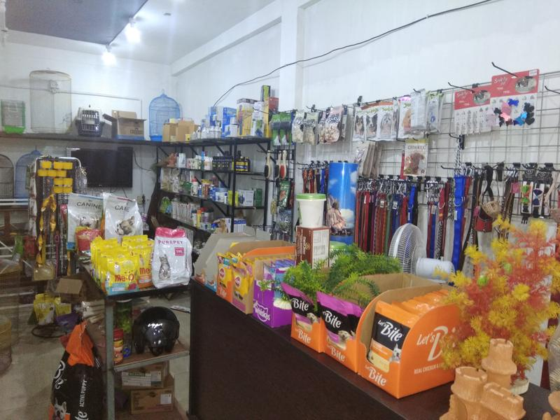 Pet Shop Investment Opportunity in Ernakulam, India