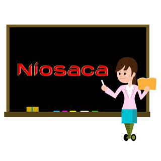 Niosaca (M/s Acceleration Academy), Established in 2017, 2 Franchisees, Chennai Headquartered