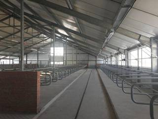 For Sale: A non-operational dairy farm business based in Chudovo, Russia.