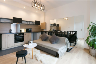 For Sale: A commercial apartment with 80-90% occupancy rate located in the center of Paris.