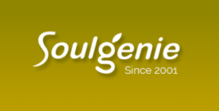 Soulgenie, Established in 2000, 10 Sales Partners, Noida Headquartered