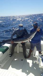 Company arranges professional fishing charters in Costa Rica having received nearly 300 bookings last year.