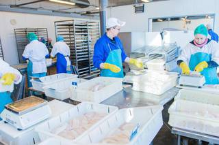 Atlantic whitefish processing business in Latvia and selling products to distributors in EU and USA.
