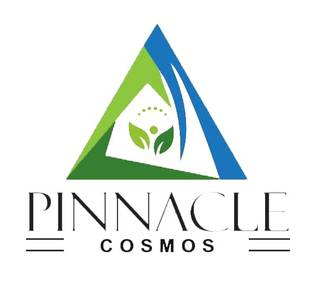 Pinnacle Cosmos, Established in 2019, 1 Sales Partner, Bhopal Headquartered
