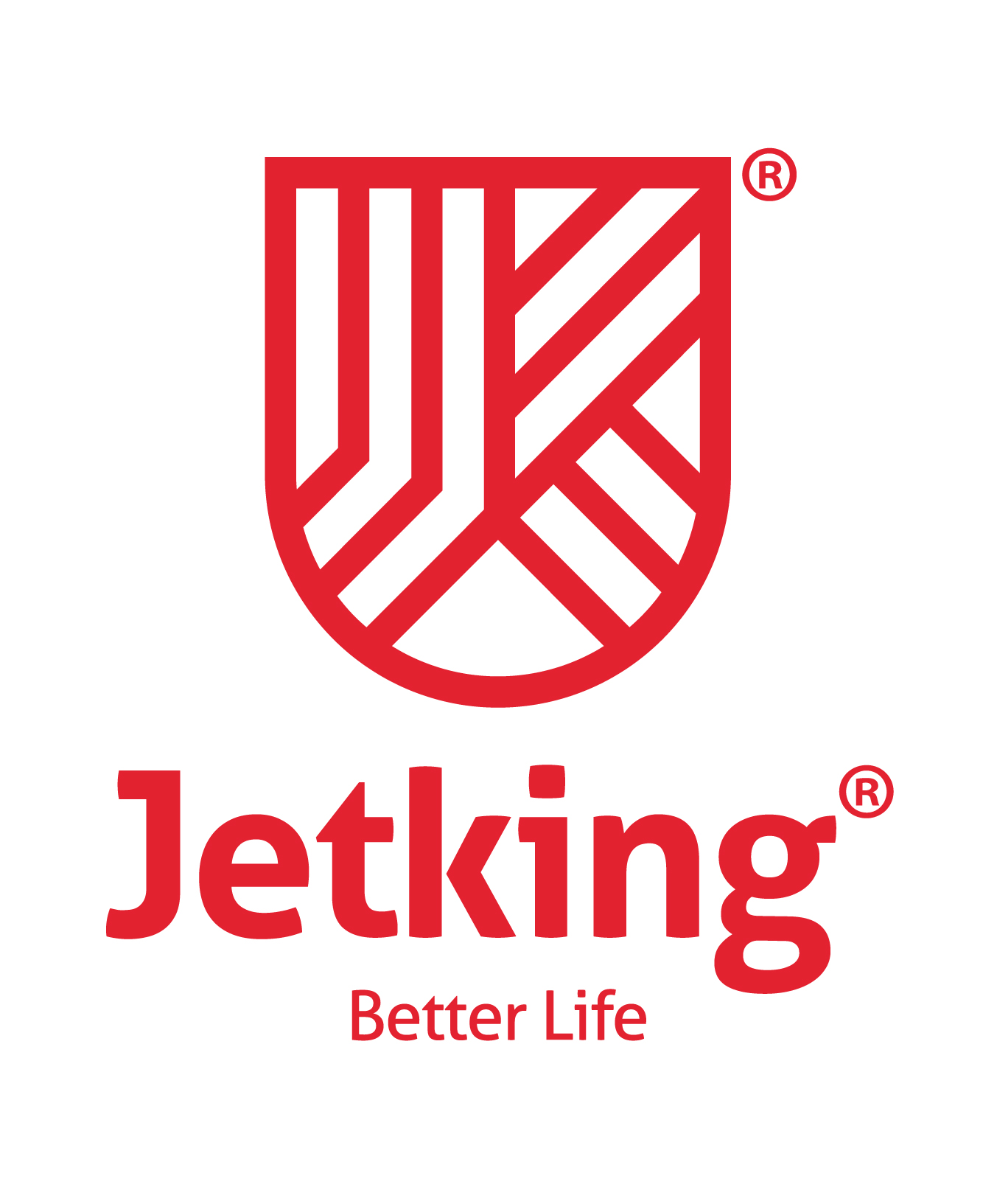 Jetking - India's No.1 IT Training Company logo
